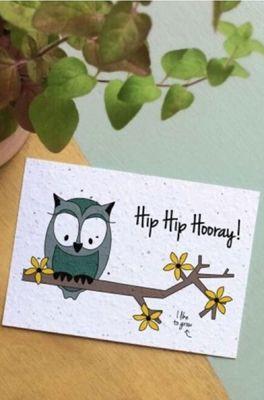 Bloom your message kaart owl hooray