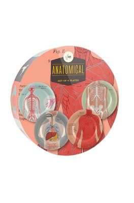Cubic Anatomical Side Plates 4