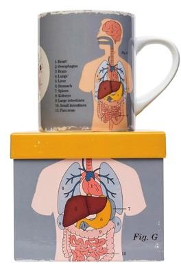 Cubic Anatomical Big Mug Organs