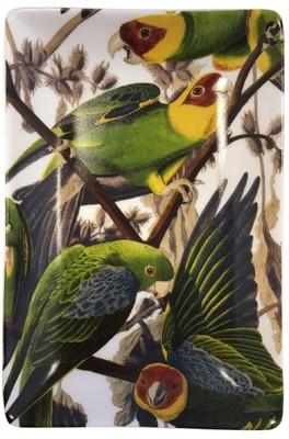 Cubic Birds Trinket Tray Parrot