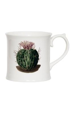 Cubic Botanical Mug Cactus