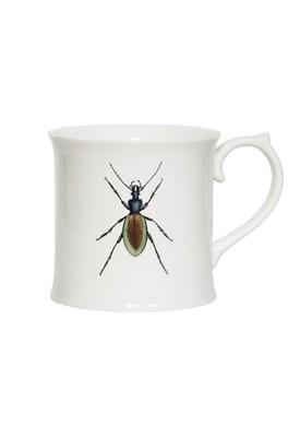 Cubic Curios Mug Beetle
