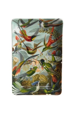 Cubic Haeckel Trinket Tray Small Hummingbird