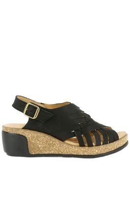 El Naturalista schoen leaves  zwart
