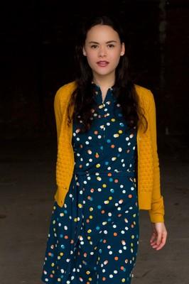 Froy & Dind jurk eloise multi
