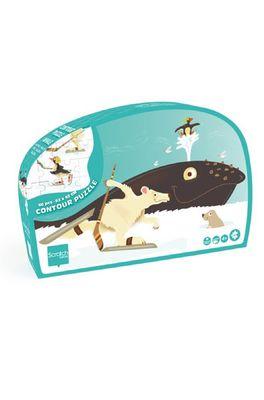 Scratch puzzel contour walvis