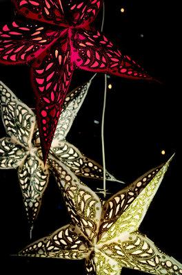 Starlightz kerstster Goud