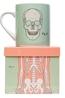 Cubic Anatomical Big Mug Skeleton