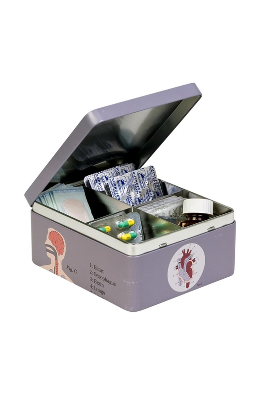 Cubic Anatomical Storage Tin Organs