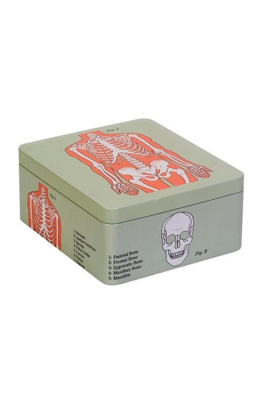 Cubic Anatomical Storage Tin Skeleton
