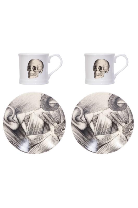 Cubic Curios Espresso set of 2 Skull