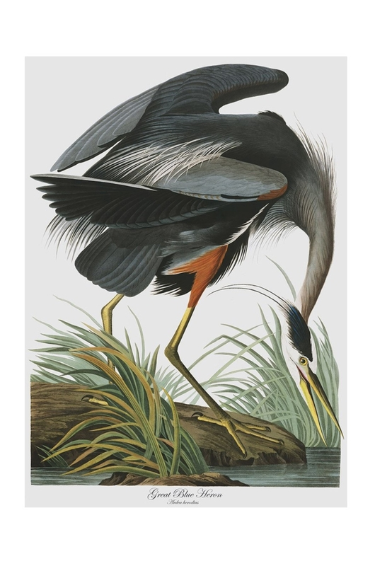 Cubic Birds Tea Towel Great Blue Heron