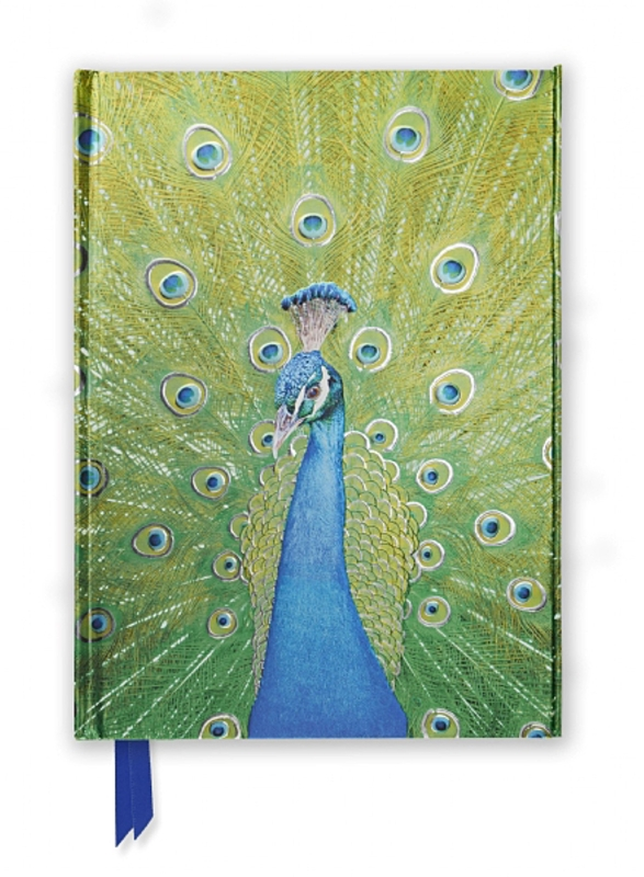 A Flame Tree Notebook Peacock