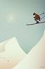 Vissevasse poster skiing