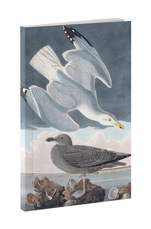 Cubic Audubon zeemeeuw notitieboek