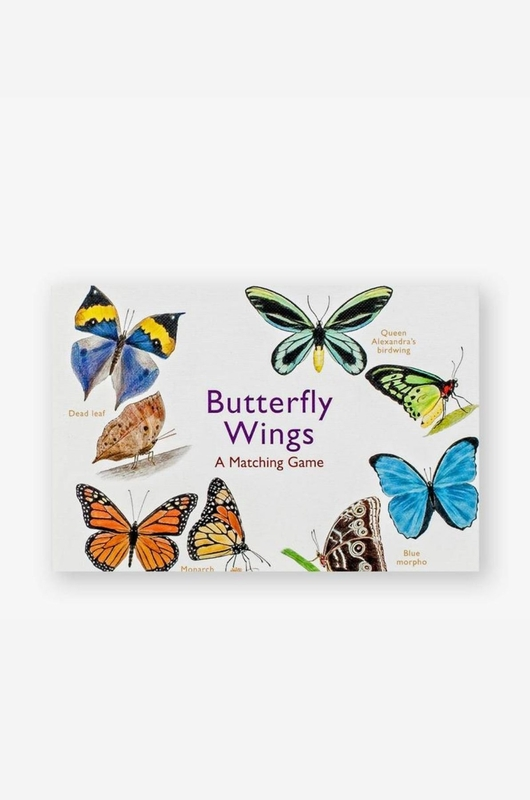Laurence King memory butterfly wings
